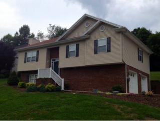 160  Regency Dr.  , Kingsport, TN 37663 (MLS #351565) :: Jim Griffin Team