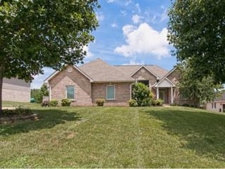 307  Emerald Chase Circle  , Johnson City, TN 37615 (MLS #351871) :: Jim Griffin Team