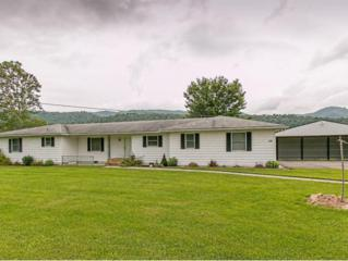 288  W.E. Neatherly Road  , Mountain City, TN 37683 (MLS #352153) :: Jim Griffin Team