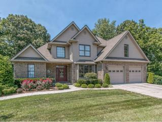 1142  Cliffview Circle  , Gray, TN 37615 (MLS #352520) :: Jim Griffin Team