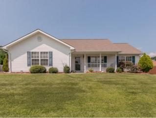 600  Willow Court  , Piney Flats, TN 37686 (MLS #353181) :: Jim Griffin Team