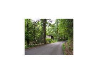 000  Waterfork Rd S , Greeneville, TN 37743 (MLS #353664) :: Jim Griffin Team