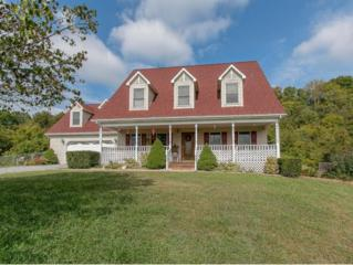 910  Poteat Lane  , Fall Branch, TN 37656 (MLS #353673) :: Jim Griffin Team