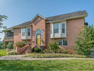 128  Old Mill Court  , Kingsport, TN 37664 (MLS #354085) :: Jim Griffin Team