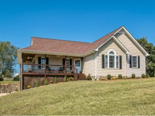 109  Carriage Lane  , Blountville, TN 37617 (MLS #354129) :: Jim Griffin Team