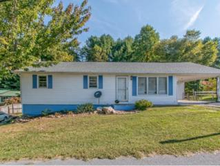 341  Peters Hollow Road  , Elizabethton, TN 37643 (MLS #354568) :: Jim Griffin Team