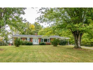 1531  Sunnydale Road  , Greeneville, TN 37743 (MLS #354792) :: Jim Griffin Team