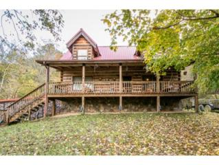 1132  Long's Bend Road  , Rogersville, TN 37857 (MLS #354993) :: Jim Griffin Team