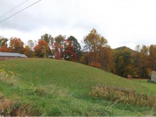 000  Teaberry Road  , Roan Mountain, TN 37687 (MLS #355203) :: Jim Griffin Team
