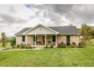 365  H Heaton Road  , Elizabethton, TN 37643 (MLS #355300) :: Jim Griffin Team