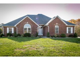 35  Chase Ct.  , Greeneville, TN 37745 (MLS #355344) :: Jim Griffin Team