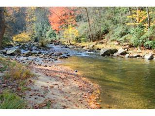 926  Old Railroad Grade Rd  , Roan Mountain, TN 37687 (MLS #355374) :: Jim Griffin Team
