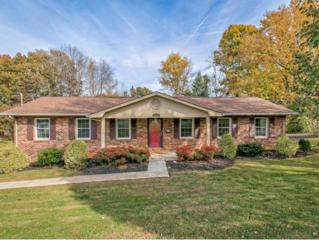 1706  Sundale Road  , Johnson City, TN 37604 (MLS #355741) :: Jim Griffin Team