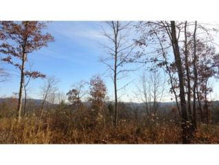 TBD  Hill Station Alley Rd  , Gate City, VA 24251 (MLS #355941) :: Jim Griffin Team