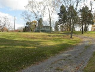 922  Mckinney Chapel  , Rogersville, TN 37857 (MLS #356133) :: Jim Griffin Team