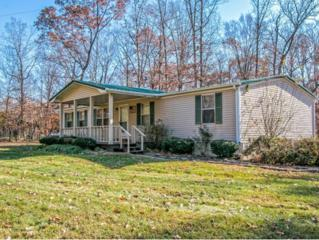 287  Hugh Story Road  , Limestone, TN 37681 (MLS #356170) :: Jim Griffin Team
