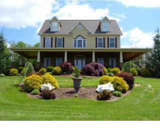 2210  Flats Circle  , Castlewood, VA 24224 (MLS #356611) :: Jim Griffin Team