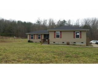 770  Oss Williams Rd  , Limestone, TN 37681 (MLS #357055) :: Jim Griffin Team