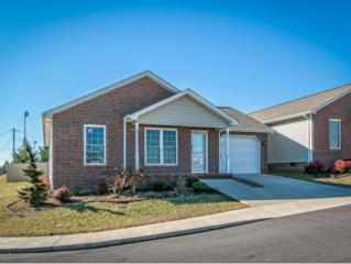 1003  Park Boulevard Cir.  , Rogersville, TN 37857 (MLS #357695) :: Jim Griffin Team