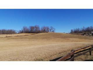 0  Oak Hill Circle  , Jonesborough, TN 37659 (MLS #357736) :: Jim Griffin Team