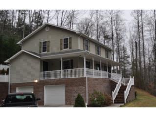 101  Laurel Road  , Erwin, TN 37650 (MLS #357845) :: Jim Griffin Team