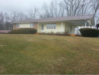 364  Moody Pvt. Drive  , Kingsport, TN 37664 (MLS #357937) :: Jim Griffin Team