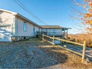 116  J Walking Way  , Johnson City, TN 37615 (MLS #358141) :: Jim Griffin Team