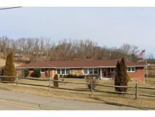 442  Independence Drive  , Kingsport, TN 37660 (MLS #358154) :: Jim Griffin Team