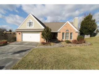 279  Highland Hills Drive  , Gray, TN 37615 (MLS #358157) :: Jim Griffin Team