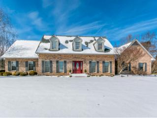 222  Saddle Ridge Dr.  , Kingsport, TN 37664 (MLS #358877) :: Jim Griffin Team