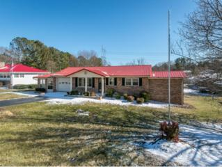 141  Archdale Dr.  , Kingsport, TN 37663 (MLS #358918) :: Jim Griffin Team