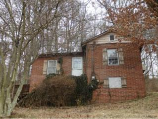 2034  Mountain View Ave  , Kingsport, TN 37664 (MLS #359026) :: Jim Griffin Team