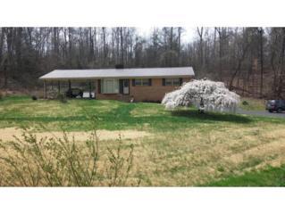 190  Horse Creek Park Road  , Chuckey, TN 37641 (MLS #360029) :: Jim Griffin Team