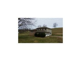 1934  Dry Hill Rd  , Butler, TN 37640 (MLS #360940) :: Jim Griffin Team