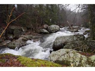 TD  19-E  , Roan Mountain, TN 37687 (MLS #361147) :: Jim Griffin Team