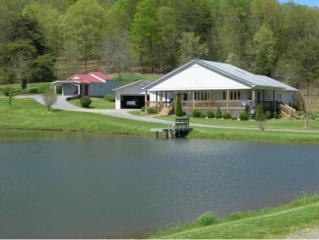 894  Butcher Valley Road  , Rogersville, TN 37857 (MLS #361384) :: Jim Griffin Team
