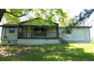 102  Carlotta Lane  , Johnson City, TN 37601 (MLS #362013) :: Jim Griffin Team