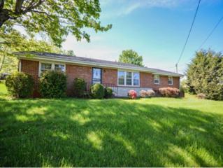 2427  Huffine Circle  , Johnson City, TN 37604 (MLS #362220) :: Jim Griffin Team
