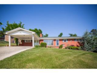 1003  Ridgefield Circle  , Johnson City, TN 37601 (MLS #362423) :: Jim Griffin Team