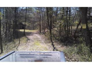 NA  Doe Creek Private Road NE , Butler, TN 37640 (MLS #362584) :: Jim Griffin Team