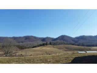 0  Clinch Valley Road  , Sneedville, TN 37869 (MLS #362868) :: Jim Griffin Team