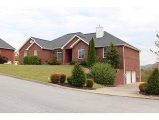 609  Tomahawk Drive  , Kingsport, TN 37664 (MLS #340864) :: Jim Griffin Team