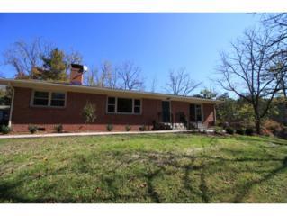 403  Springbrook Drive  , Bristol, TN 37620 (MLS #355280) :: Jim Griffin Team