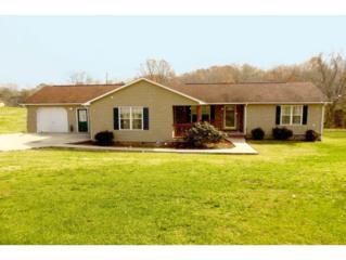 642  Woods Road  , Bluff City, TN 37618 (MLS #356028) :: Jim Griffin Team