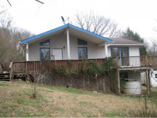 880  Grass Way  , Parrottsville, TN 37843 (MLS #356634) :: Jim Griffin Team