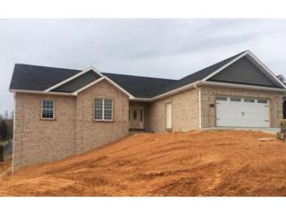 295  Goldenrod Drive  , Jonesborough, TN 37659 (MLS #359649) :: Jim Griffin Team