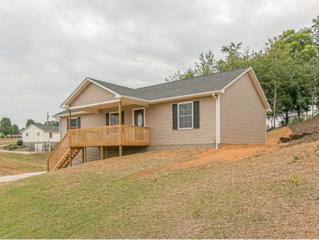 52  Mill Drive  , Greeneville, TN 37745 (MLS #346247) :: Jim Griffin Team