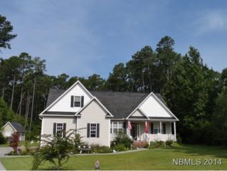 104  Estelle Court  , Havelock, NC 28532 (MLS #95665) :: First Carolina, REALTORS®