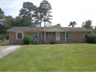 113  Craven Drive  , Havelock, NC 28532 (MLS #95743) :: First Carolina, REALTORS®