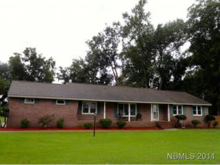 203  West Palmer Drive  , New Bern, NC 28560 (MLS #96087) :: First Carolina, REALTORS®